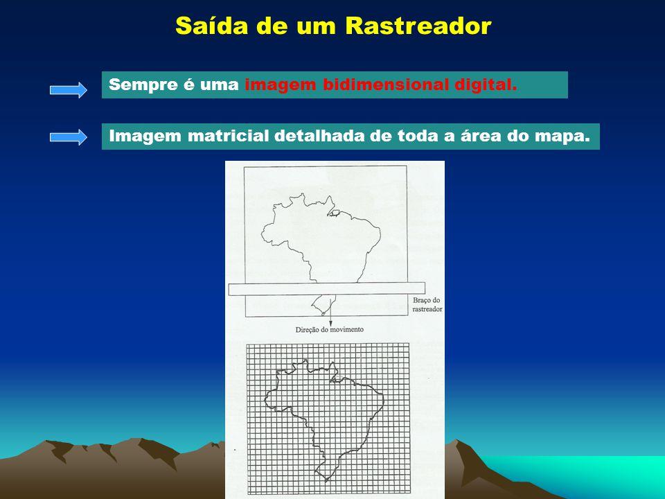 Saída de um Rastreador Sempre é uma imagem bidimensional digital. Imagem matricial detalhada de toda a área do mapa.
