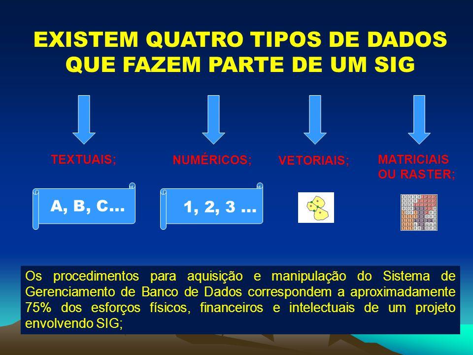 EXISTEM QUATRO TIPOS DE DADOS QUE FAZEM PARTE DE UM SIG TEXTUAIS; NUMÉRICOS; VETORIAIS; MATRICIAIS OU RASTER; A, B, C... 1, 2, 3... Os procedimentos p