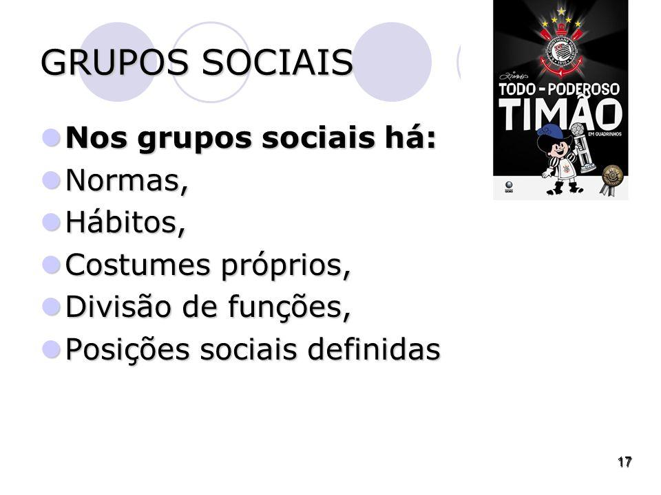 GRUPOS SOCIAIS Nos grupos sociais há: Nos grupos sociais há: Normas, Normas, Hábitos, Hábitos, Costumes próprios, Costumes próprios, Divisão de funções, Divisão de funções, Posições sociais definidas Posições sociais definidas 17