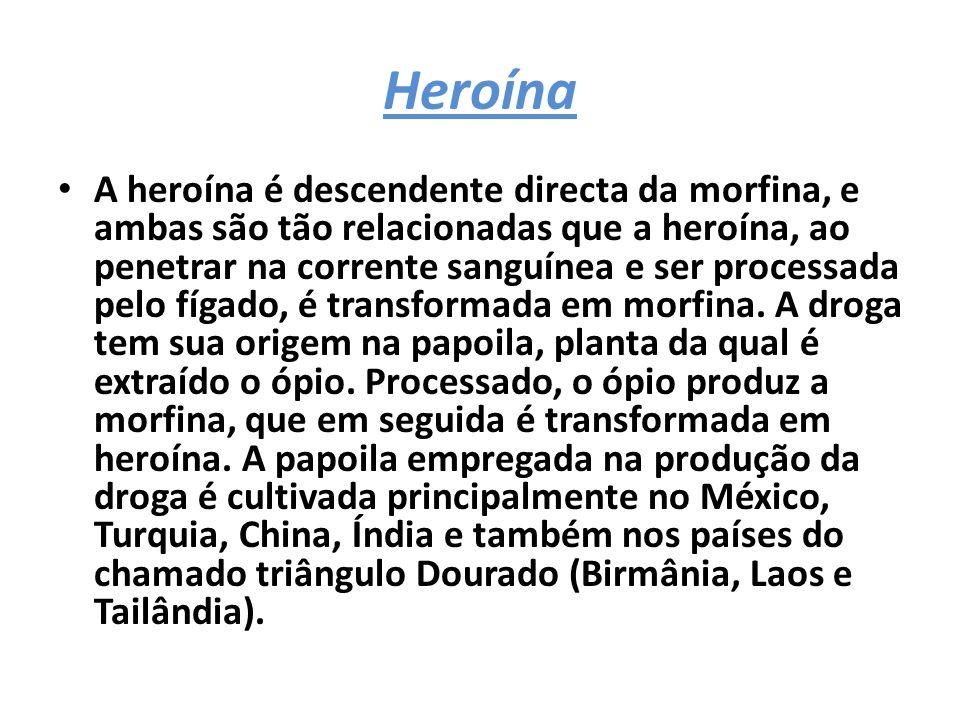 Heroína A heroína é descendente directa da morfina, e ambas são tão relacionadas que a heroína, ao penetrar na corrente sanguínea e ser processada pelo fígado, é transformada em morfina.