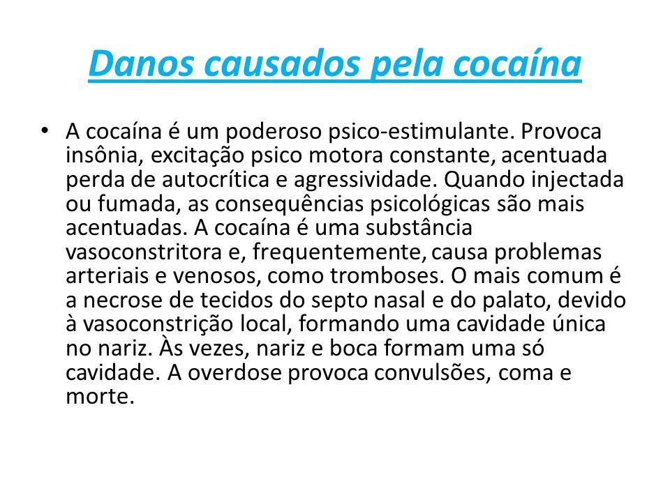 Danos causados pela cocaína A cocaína é um poderoso psico-estimulante.