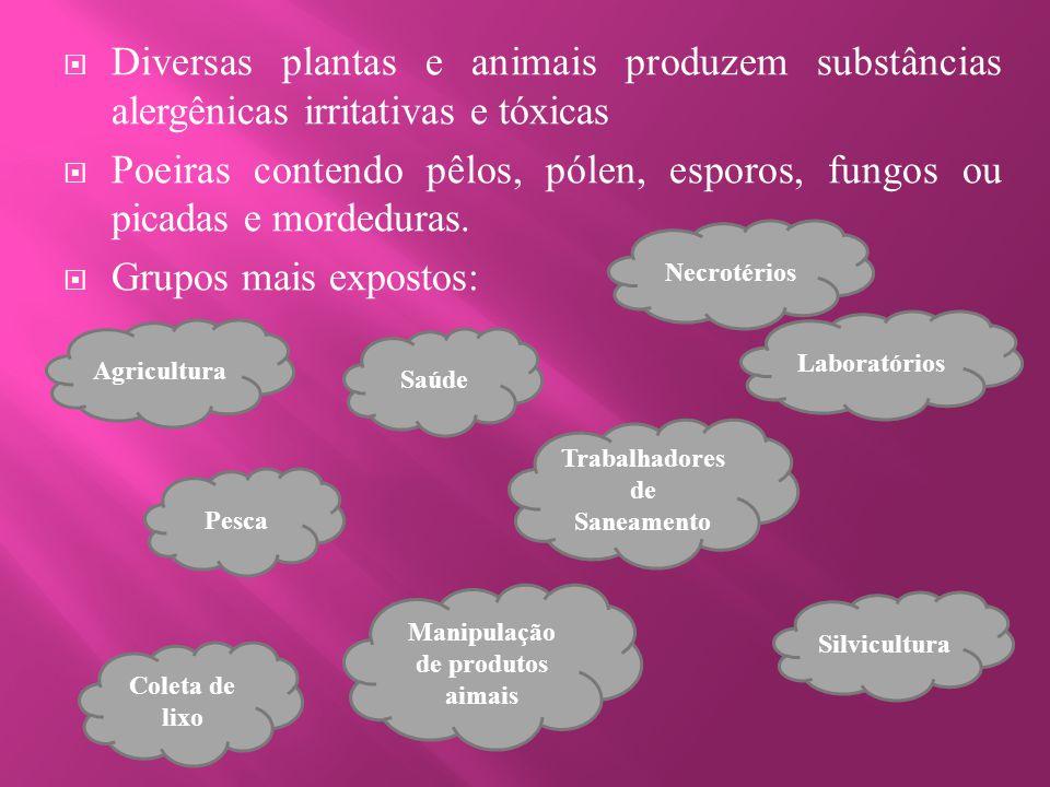  Diversas plantas e animais produzem substâncias alergênicas irritativas e tóxicas  Poeiras contendo pêlos, pólen, esporos, fungos ou picadas e mord