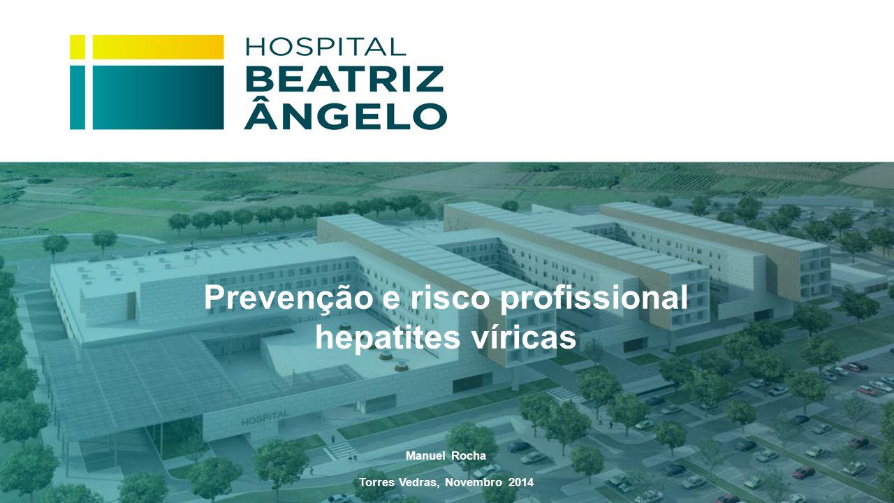 Prevenção e risco profissional hepatites víricas Manuel Rocha Torres Vedras, Novembro 2014