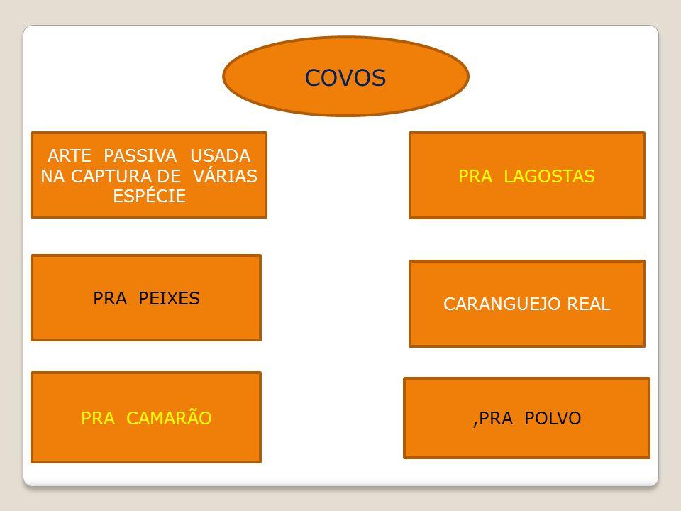 COVOS ARTE PASSIVA USADA NA CAPTURA DE VÁRIAS ESPÉCIE PRA LAGOSTAS PRA PEIXES CARANGUEJO REAL PRA CAMARÃO,PRA POLVO