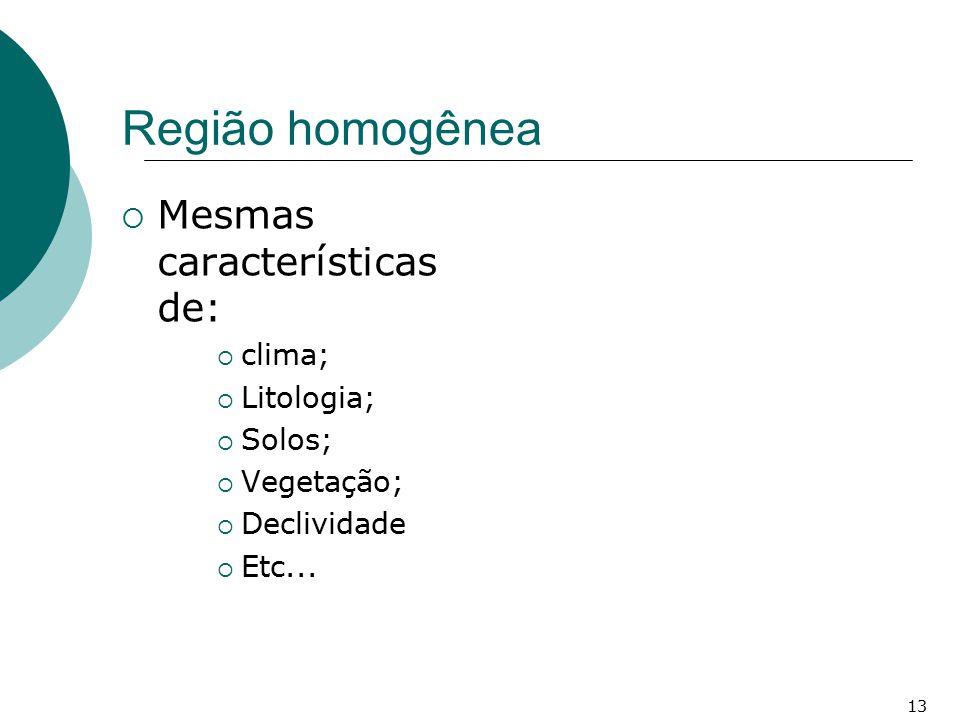 Região homogênea  Mesmas características de:  clima;  Litologia;  Solos;  Vegetação;  Declividade  Etc... 13