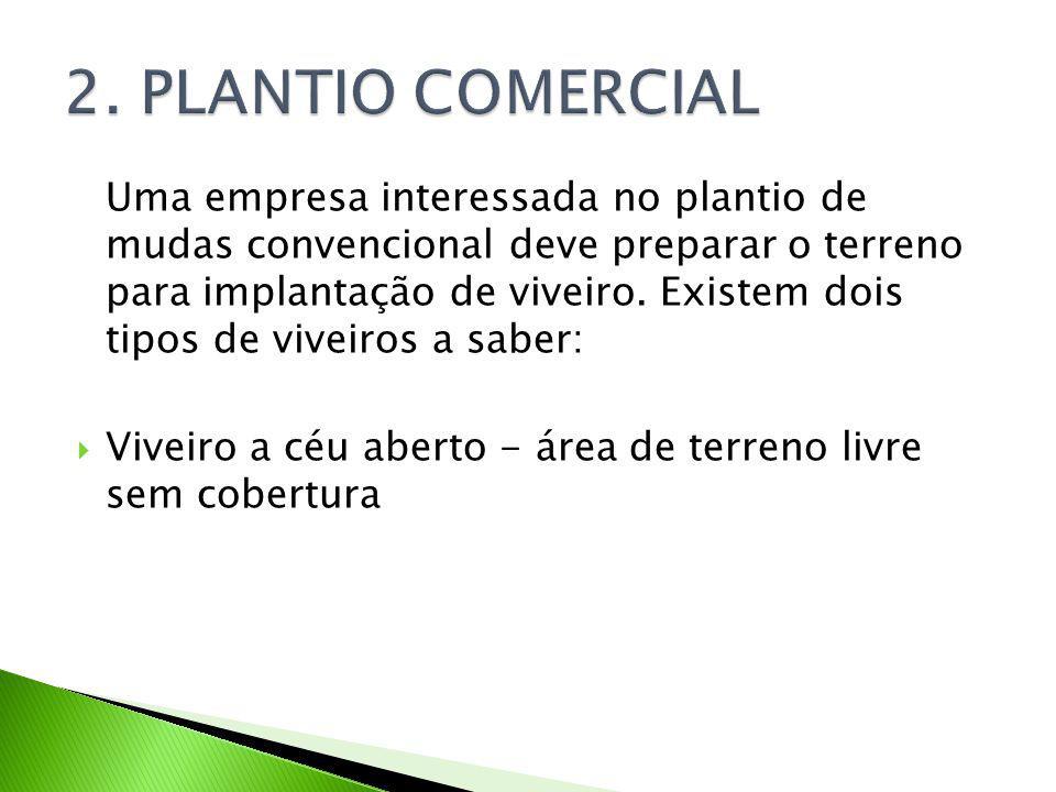 Uma empresa interessada no plantio de mudas convencional deve preparar o terreno para implantação de viveiro.