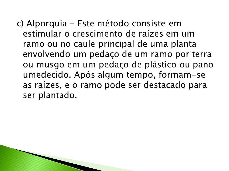c) Alporquia - Este método consiste em estimular o crescimento de raízes em um ramo ou no caule principal de uma planta envolvendo um pedaço de um ramo por terra ou musgo em um pedaço de plástico ou pano umedecido.
