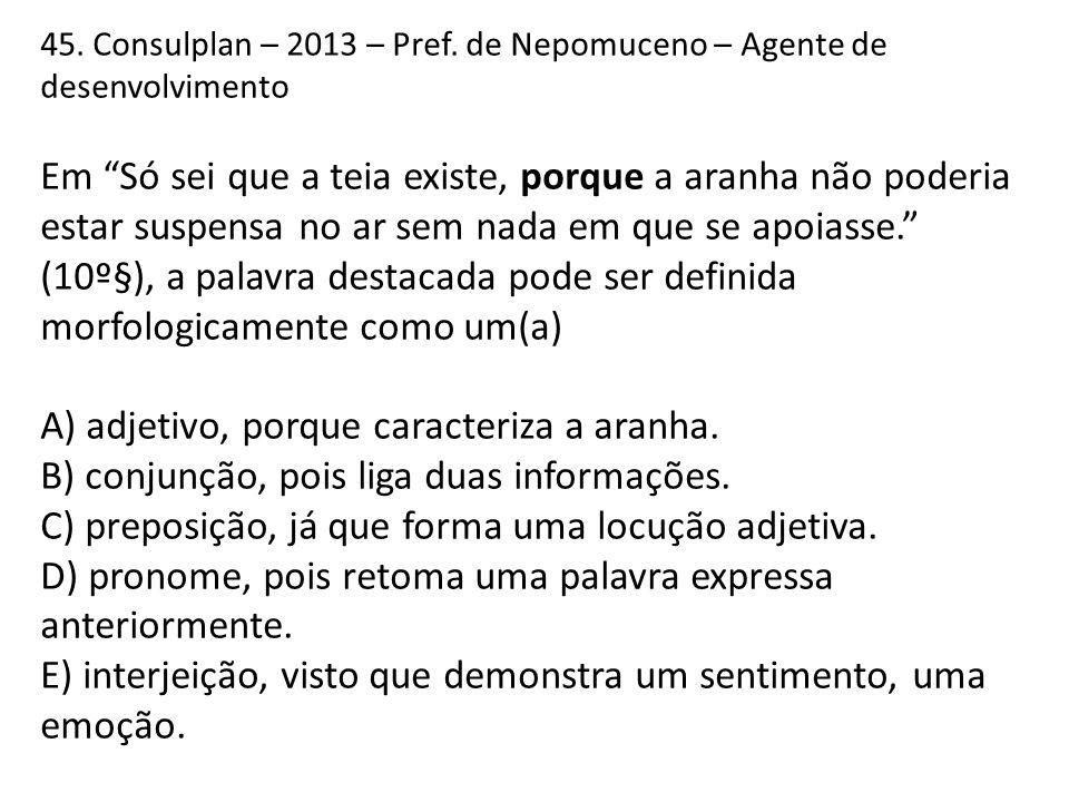 45.Consulplan – 2013 – Pref.