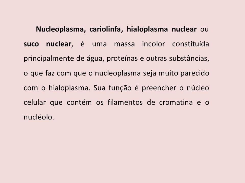 Nucleoplasma, cariolinfa, hialoplasma nuclear ou suco nuclear, é uma massa incolor constituída principalmente de água, proteínas e outras substâncias,