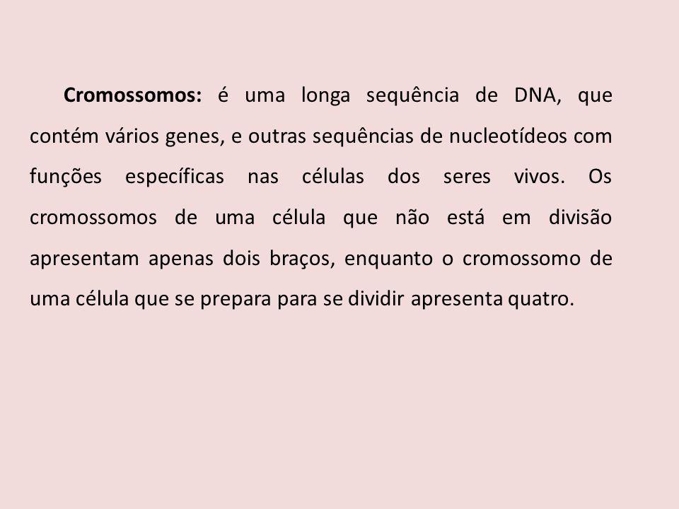 Cromossomos: é uma longa sequência de DNA, que contém vários genes, e outras sequências de nucleotídeos com funções específicas nas células dos seres vivos.