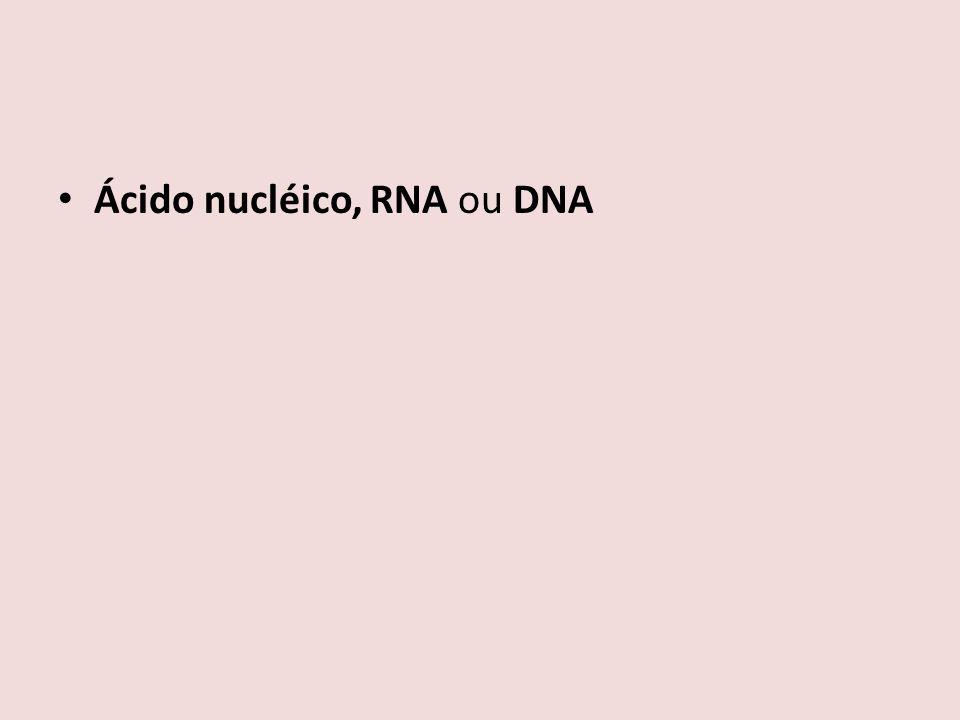 Ácido nucléico, RNA ou DNA