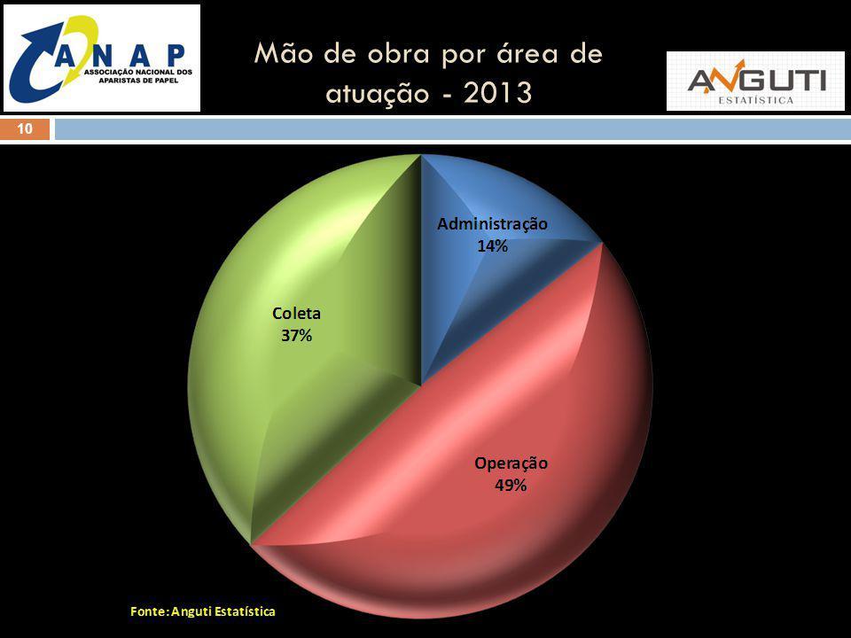 10 Mão de obra por área de atuação - 2013