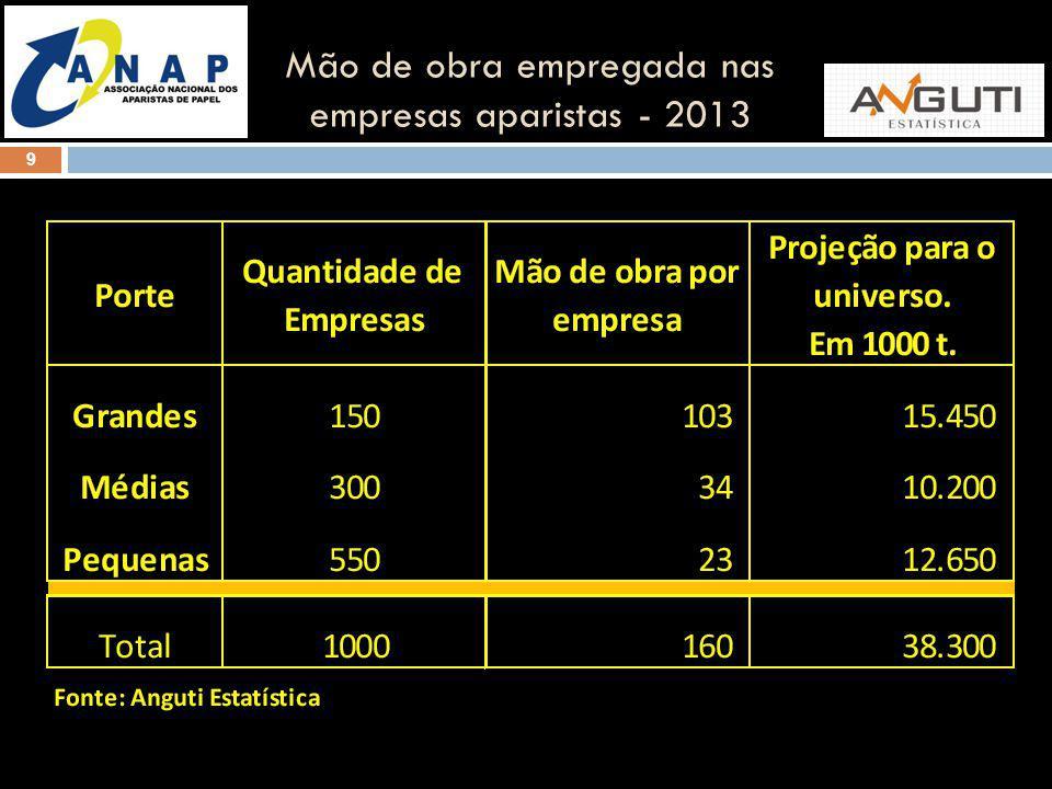 9 Mão de obra empregada nas empresas aparistas - 2013