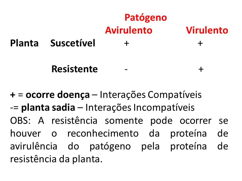 Patógeno Avirulento Virulento Planta Suscetível + + Resistente - + + = ocorre doença – Interações Compatíveis -= planta sadia – Interações Incompatíve