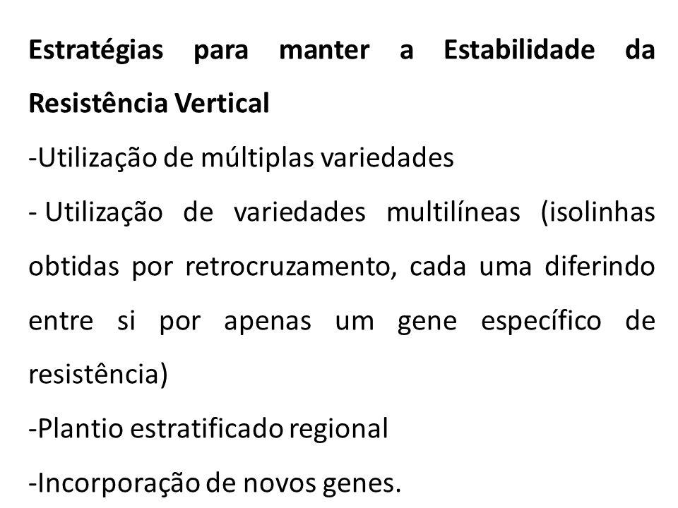 Estratégias para manter a Estabilidade da Resistência Vertical -Utilização de múltiplas variedades - Utilização de variedades multilíneas (isolinhas obtidas por retrocruzamento, cada uma diferindo entre si por apenas um gene específico de resistência) -Plantio estratificado regional -Incorporação de novos genes.