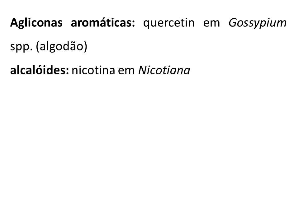 Agliconas aromáticas: quercetin em Gossypium spp. (algodão) alcalóides: nicotina em Nicotiana