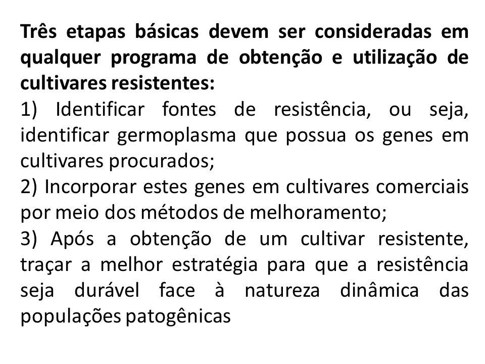 Três etapas básicas devem ser consideradas em qualquer programa de obtenção e utilização de cultivares resistentes: 1) Identificar fontes de resistênc