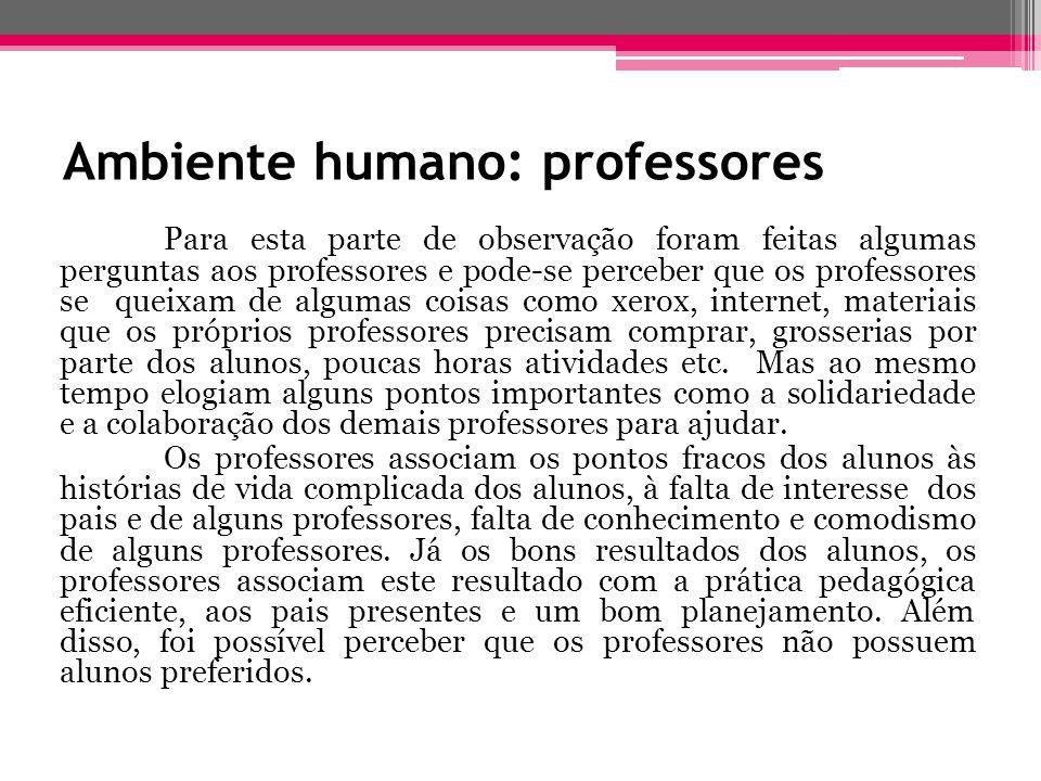 Ambiente humano: professores Para esta parte de observação foram feitas algumas perguntas aos professores e pode-se perceber que os professores se que