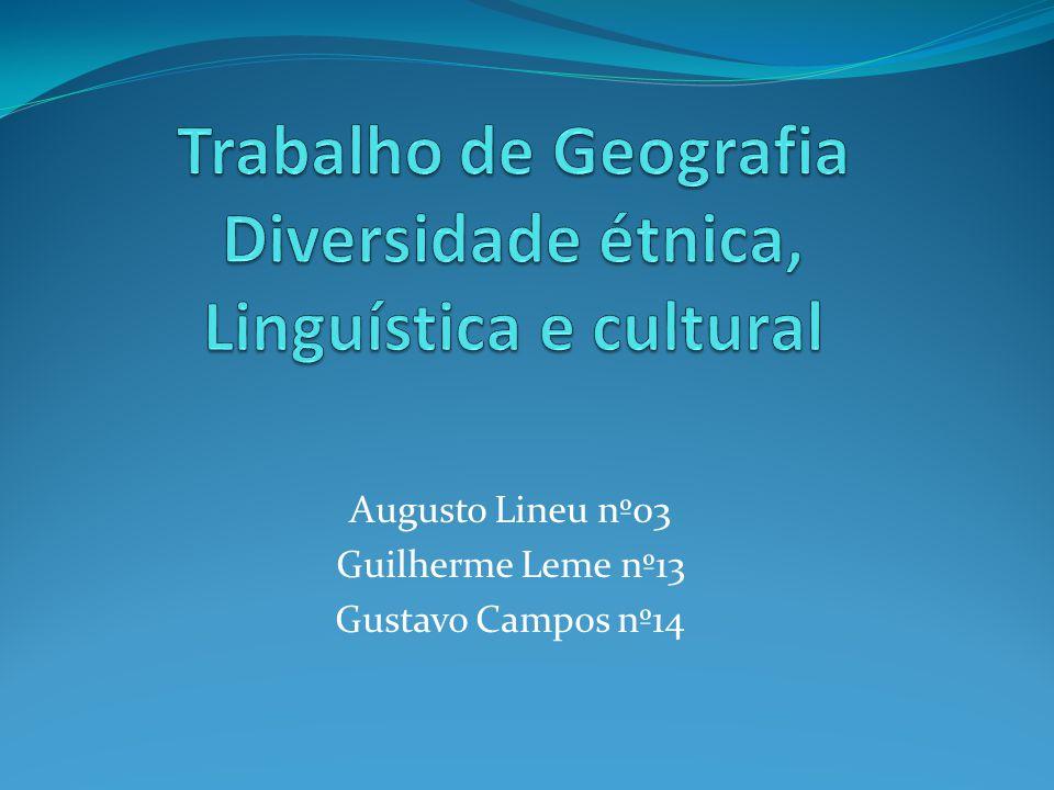 Augusto Lineu nº03 Guilherme Leme nº13 Gustavo Campos nº14