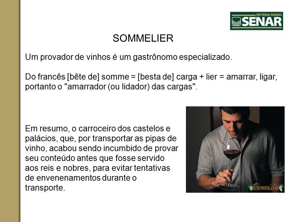 SOMMELIER Um provador de vinhos é um gastrônomo especializado. Do francês [bête de] somme = [besta de] carga + lier = amarrar, ligar, portanto o