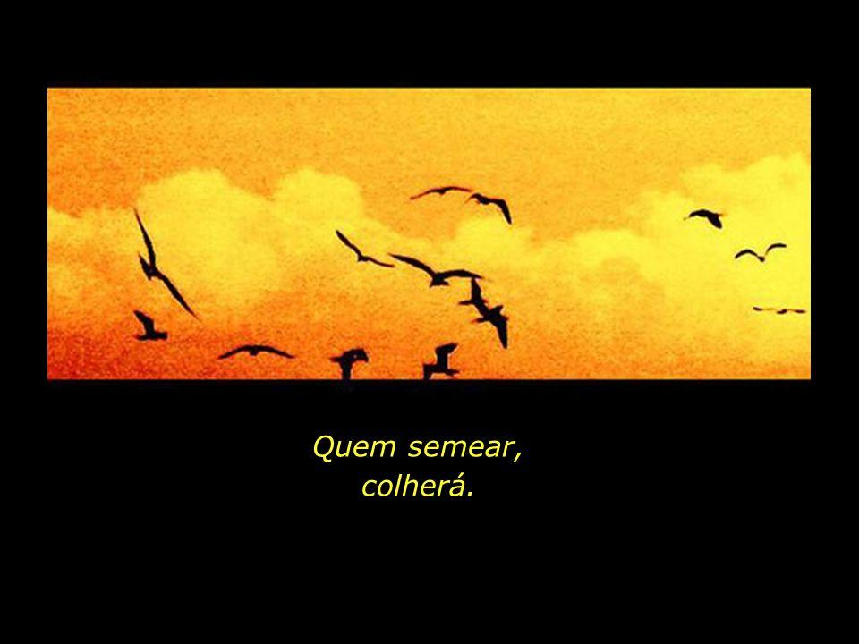 Outros céus, outros horizontes, outros esplendores nos esperam...