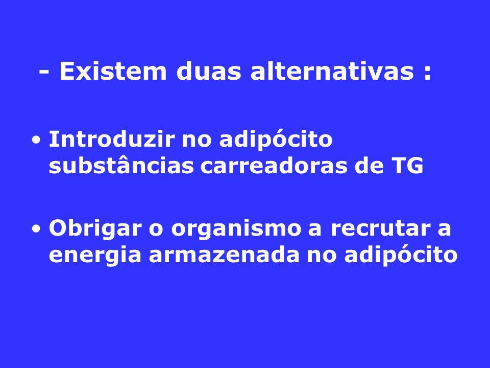 - Existem duas alternativas : Introduzir no adipócito substâncias carreadoras de TG Obrigar o organismo a recrutar a energia armazenada no adipócito