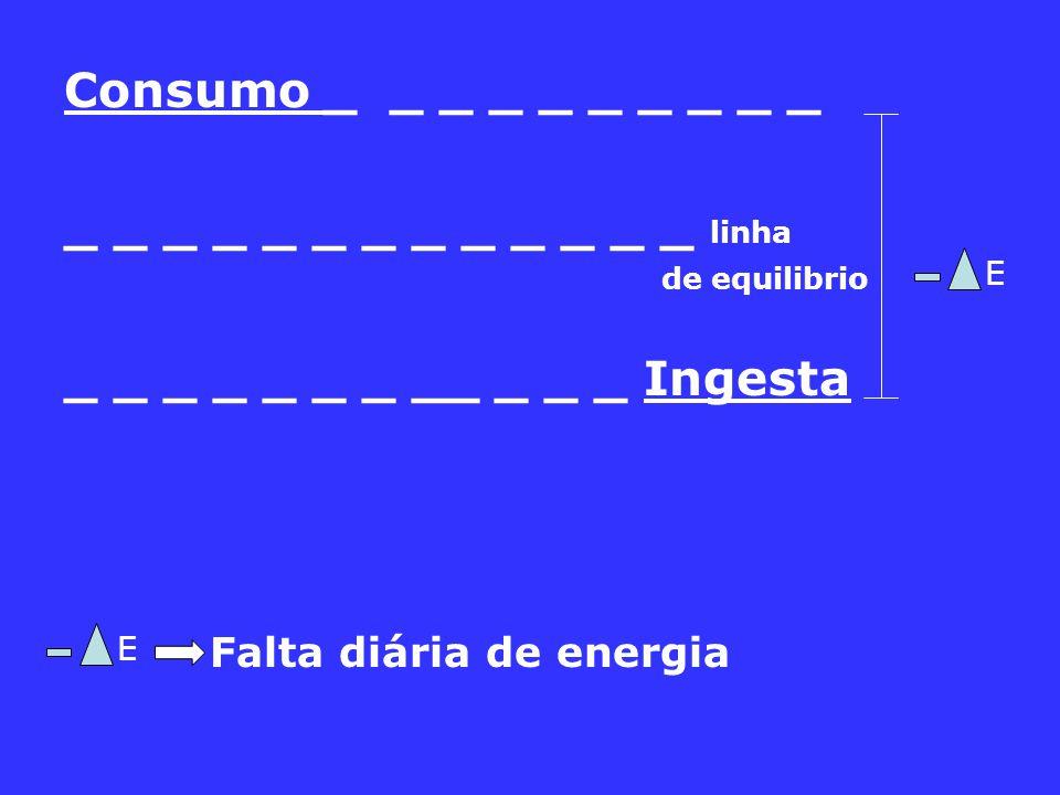 Consumo _ _ _ _ _ _ _ _ _ _ _ _ _ _ _ _ _ _ _ _ _ _ _ linha de equilibrio _ _ _ _ _ _ _ __ _ _ _ Ingesta Falta diária de energia E E