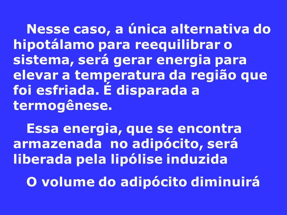 Nesse caso, a única alternativa do hipotálamo para reequilibrar o sistema, será gerar energia para elevar a temperatura da região que foi esfriada.