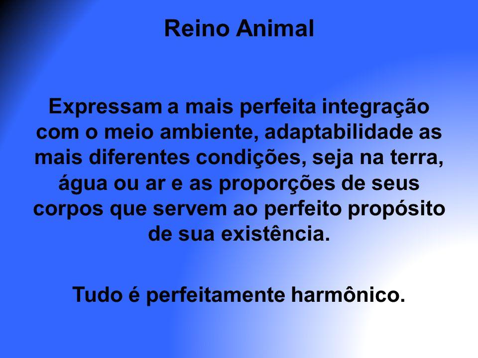 Reino Animal Expressam a mais perfeita integração com o meio ambiente, adaptabilidade as mais diferentes condições, seja na terra, água ou ar e as pro