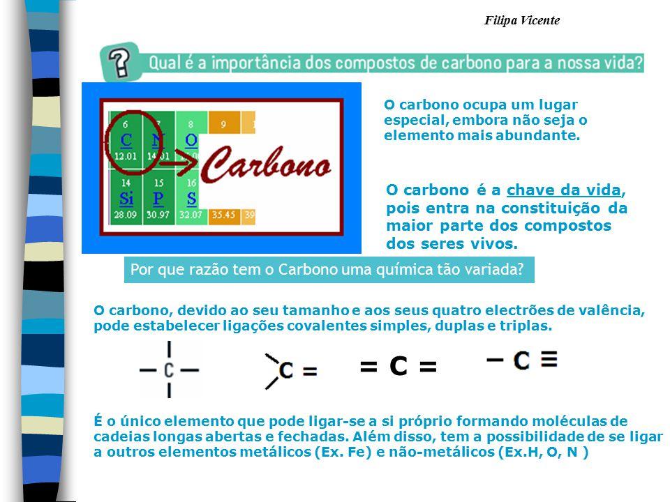 O carbono é a chave da vida, pois entra na constituição da maior parte dos compostos dos seres vivos. Por que razão tem o Carbono uma química tão vari