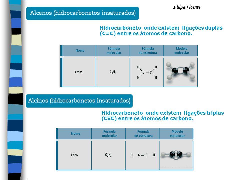 Filipa Vicente Hidrocarboneto onde existem ligações triplas (CΞC) entre os átomos de carbono. Hidrocarboneto onde existem ligações duplas (C=C) entre