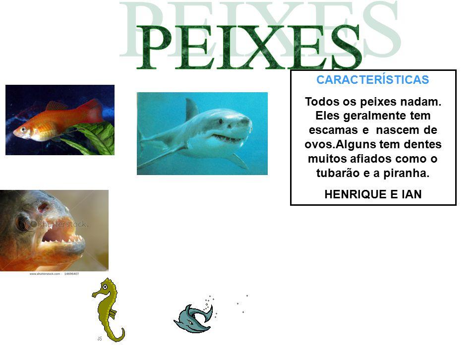 CARACTERÍSTICAS Todos os peixes nadam. Eles geralmente tem escamas e nascem de ovos.Alguns tem dentes muitos afiados como o tubarão e a piranha. HENRI