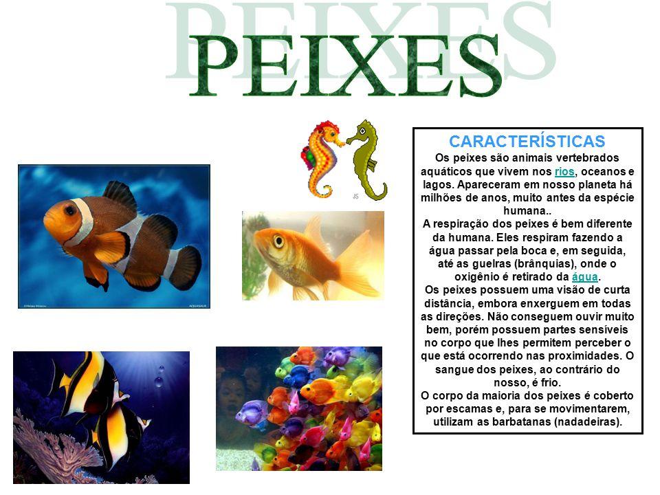 CARACTERÍSTICAS Os peixes são animais vertebrados aquáticos que vivem nos rios, oceanos e lagos. Apareceram em nosso planeta há milhões de anos, muito