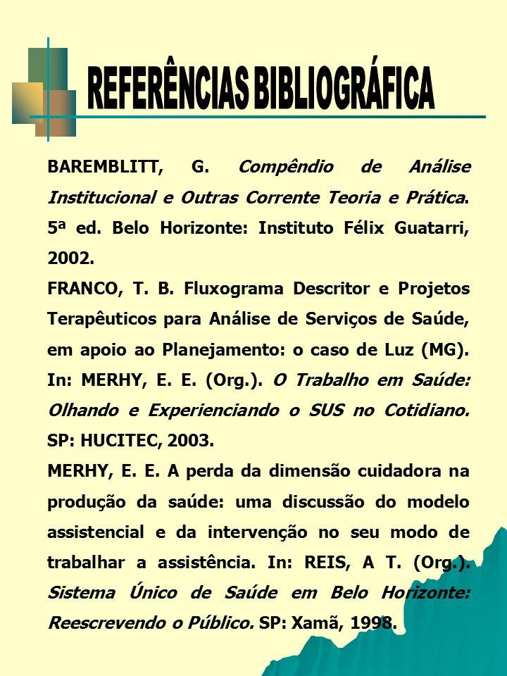 BAREMBLITT, G. Compêndio de Análise Institucional e Outras Corrente Teoria e Prática. 5ª ed. Belo Horizonte: Instituto Félix Guatarri, 2002. FRANCO, T