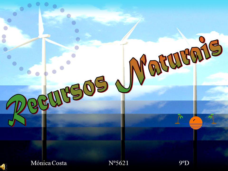 O Homem, desde sempre tem vindo a retirar do ambiente natural, todos os recursos indispensáveis à sua sobrevivência.