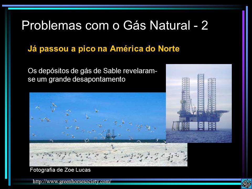 Problemas com o Gás Natural - 2 http://www.greenhorsesociety.com/ Já passou a pico na América do Norte Os depósitos de gás de Sable revelaram- se um grande desapontamento Fotografia de Zoe Lucas