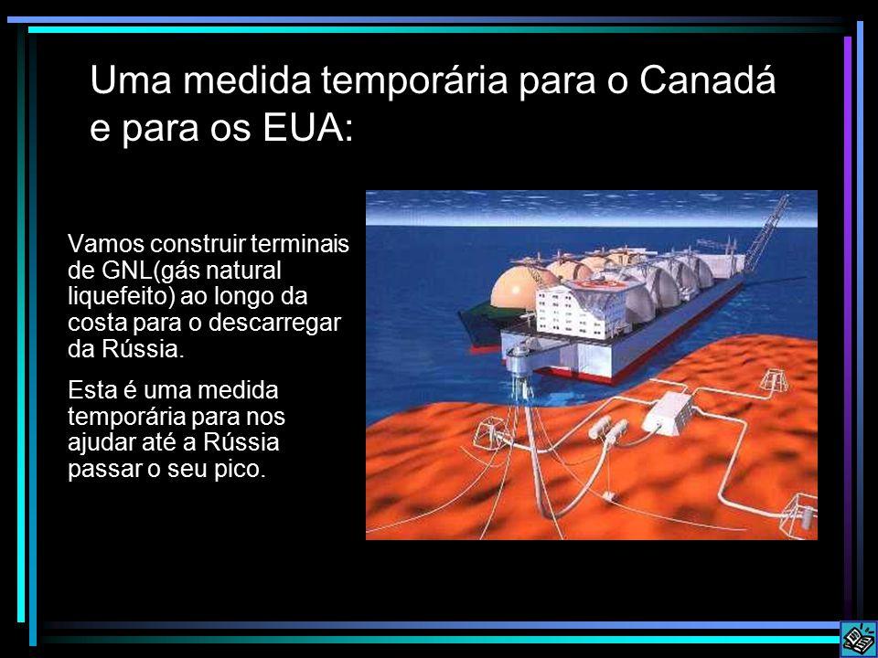 Uma medida temporária para o Canadá e para os EUA: Vamos construir terminais de GNL(gás natural liquefeito) ao longo da costa para o descarregar da Rússia.