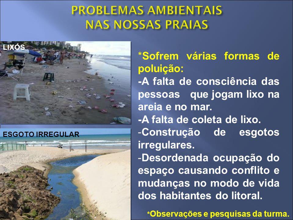 ESGOTO IRREGULAR LIXOS *Sofrem várias formas de poluição: -A falta de consciência das pessoas que jogam lixo na areia e no mar. -A falta de coleta de