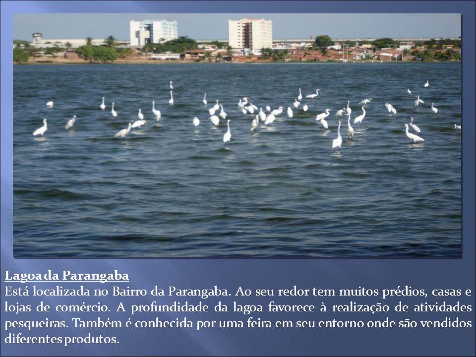 Lagoa da Parangaba Está localizada no Bairro da Parangaba. Ao seu redor tem muitos prédios, casas e lojas de comércio. A profundidade da lagoa favorec