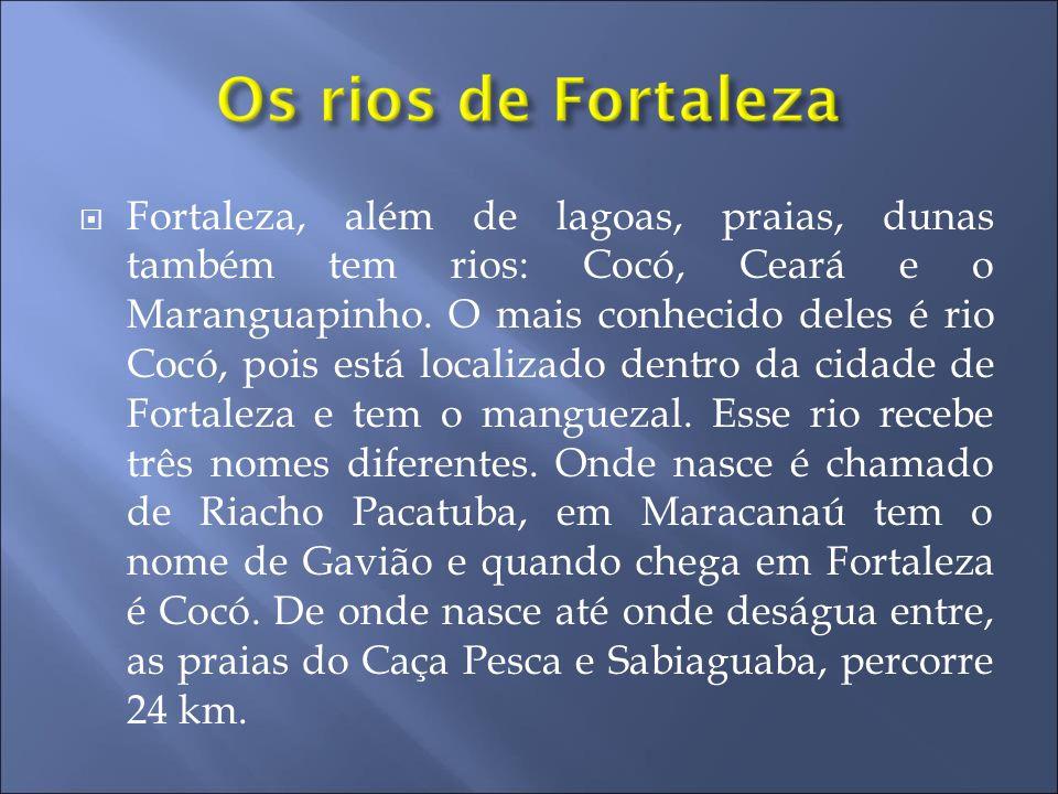  Fortaleza, além de lagoas, praias, dunas também tem rios: Cocó, Ceará e o Maranguapinho. O mais conhecido deles é rio Cocó, pois está localizado den
