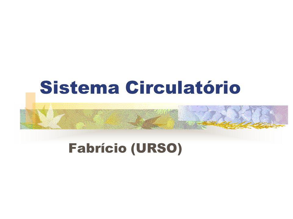 Sistema Circulatório Fabrício (URSO)