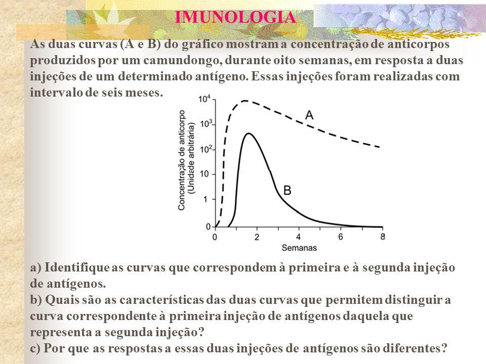IMUNOLOGIA As duas curvas (A e B) do gráfico mostram a concentração de anticorpos produzidos por um camundongo, durante oito semanas, em resposta a du