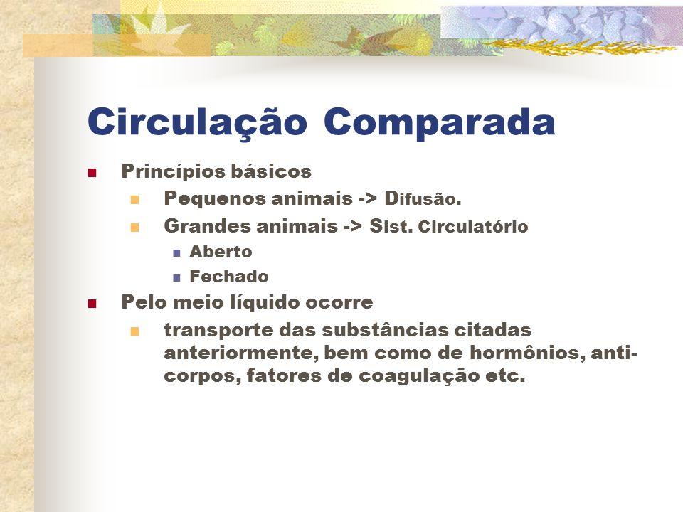 Circulação Comparada Princípios básicos Pequenos animais -> D ifusão. Grandes animais -> S ist. Circulatório Aberto Fechado Pelo meio líquido ocorre t