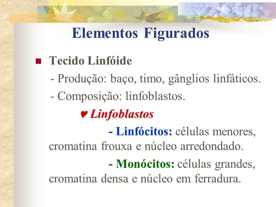 Elementos Figurados Tecido Linfóide - Produção: baço, timo, gânglios linfáticos. - Composição: linfoblastos. Linfoblastos Linfoblastos - Linfócitos: c