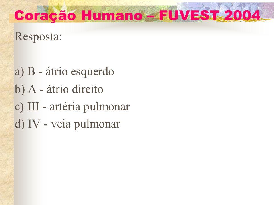 Coração Humano – FUVEST 2004 Resposta: a) B - átrio esquerdo b) A - átrio direito c) III - artéria pulmonar d) IV - veia pulmonar