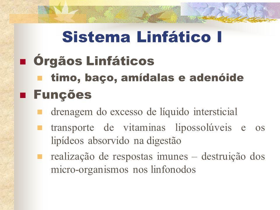 Sistema Linfático I Órgãos Linfáticos timo, baço, amídalas e adenóide Funções drenagem do excesso de líquido intersticial transporte de vitaminas lipo