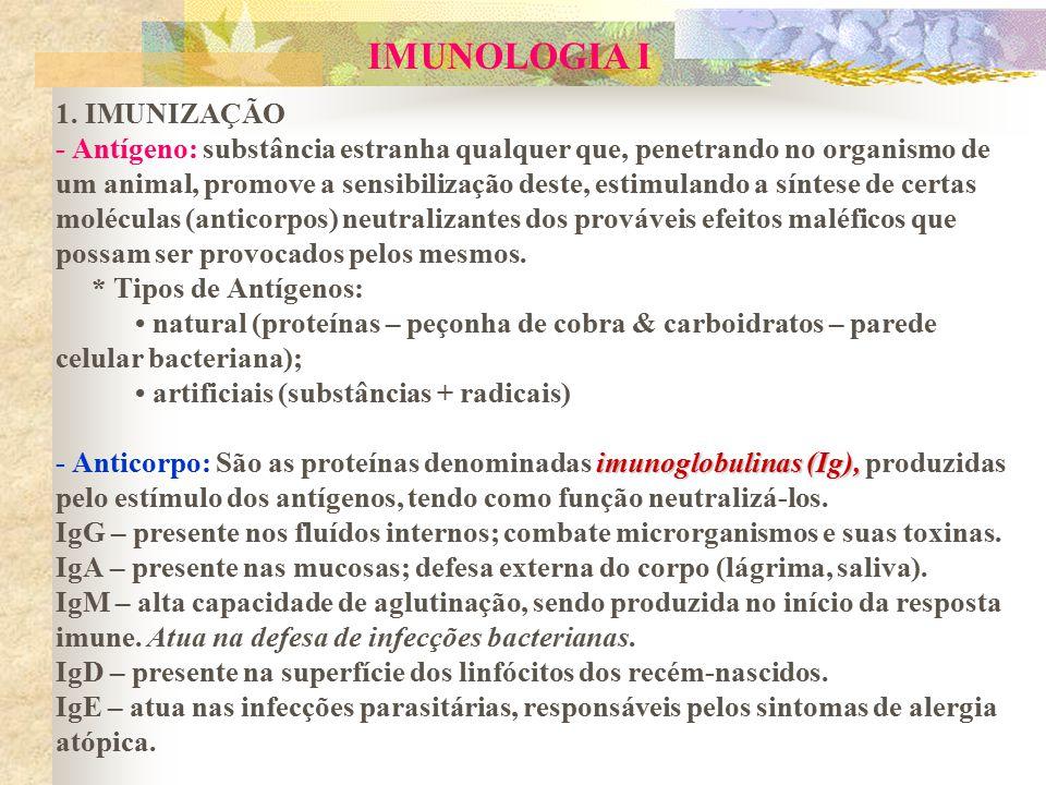 imunoglobulinas (Ig), IMUNOLOGIA I 1. IMUNIZAÇÃO - Antígeno: substância estranha qualquer que, penetrando no organismo de um animal, promove a sensibi