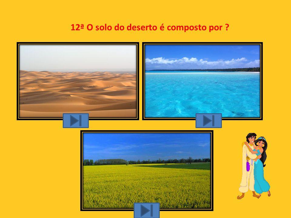 11ª Como nos orientamos no deserto?