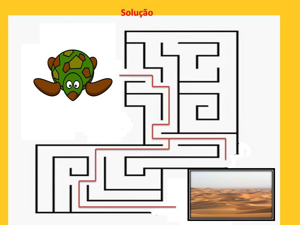 18ª Ajude a tartaruga a chegar ao deserto !