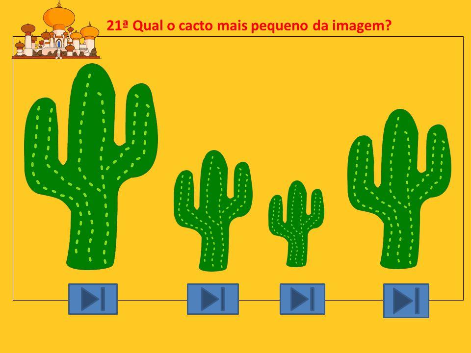 20ª O que tem a cobra cascavel na cauda? A: B: C:D: Campainha GuizoSino Buzina